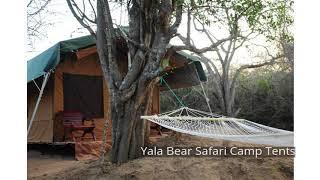 Yala Bear Safari Camp Tents