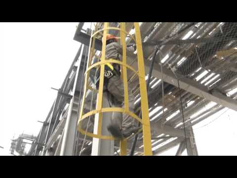 Fall Protection Protecting a Ladder With a Workman SRL