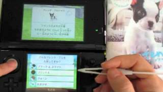 3DS Nintendogs + Cats (French Bulldog)