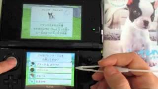 3DS Nintendogs + Cats (French Bulldog)
