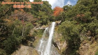 五家荘 栴檀轟の滝紅葉 Sedndantodoro no Taki Waterfall