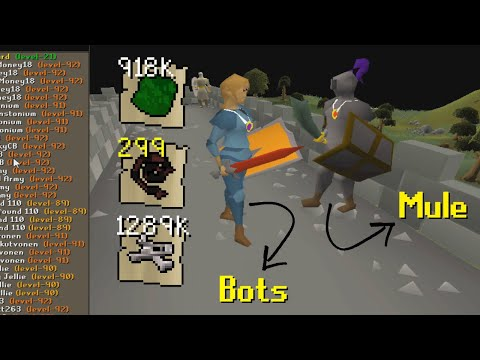 I Waited Here Until 3 AM To Catch Bot Farms Muling Their Gold