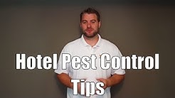 Hotel pest control tips