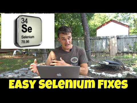 Why Healthy Eaters Become Selenium Deficient