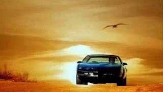 Jump in my Car David Hasselhoff