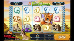 Marvellous £1,320 Win - Free Games Bonus - Fortunes Of The Fox Online Slots Review