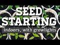 How to start seeds indoors! + Grow light setup