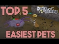 Top 5 Easiest Pets to Get in OSRS