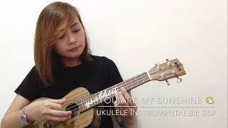 You are my Sunshine (Ukulele Instrumetal)