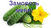 Интернет-магазин sima-land. Ru – вазы из стекла купить по цене опта от 35 руб. Производителя с доставкой. Москва, санкт-петербург, екатеринбург.