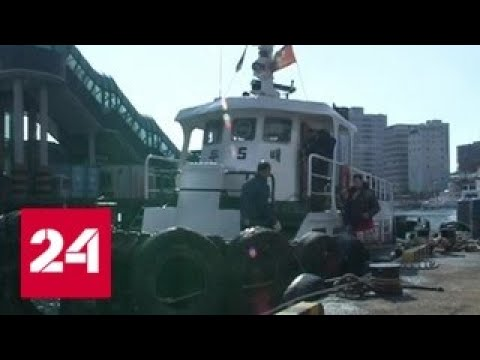 Посольство КНДР: задержанное судно вернется в Россию после проверки - Россия 24