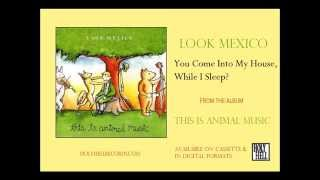 Look Mexico - You Come Into My House, While I Sleep?