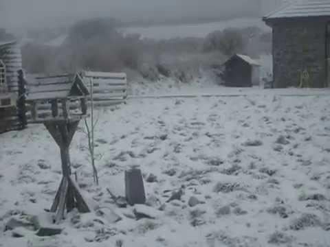 Lisselton Snow Fun