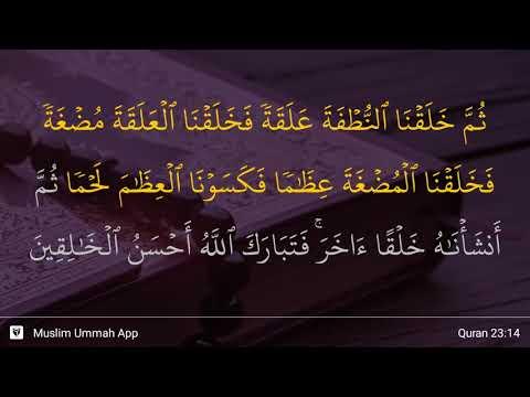 Al-Mu'minun Ayat 14