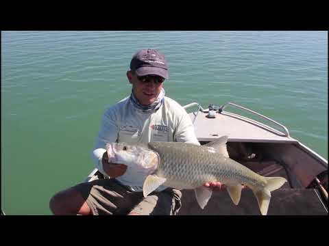 Vanderkloof Dam Fly Fishing Trip With Linecasters