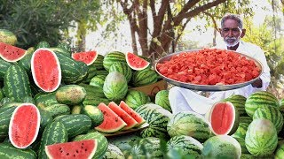 WATERMELON !! WATERMELON !!  200 KG Watermelon Serving to Homeless by our Grandpa...