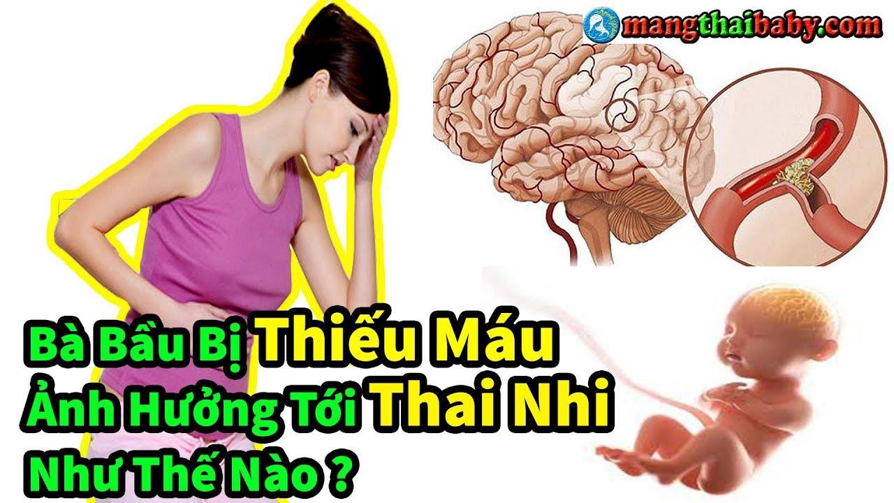 ✅ Mẹ Bầu Bị Thiếu Máu Khi Đang Mang Thai Có Ảnh Hưởng Tới Thai Nhi Hay Không ? | Cách Bổ Sung Sắt