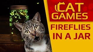 CAT GAMES - Fireflies in a Jar (Entertainment video for cats to watch) 60FPS 4K