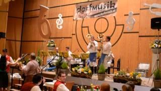 eine kleine dorfMusik - Musikantenball 2014 - 4