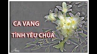 CA VANG TÌNH YÊU CHÚA 2 - Ca đoàn Hài Đồng