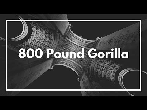 800 Pound Gorilla (produced by. JS aka The Best) | Official Music Video
