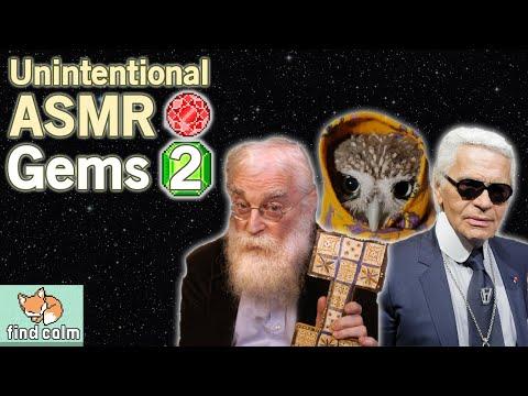 7 Unintentional ASMR Gems #2 💎 Karl Lagerfeld, Cute Owl & Anime Artist (Narrated Compilation)