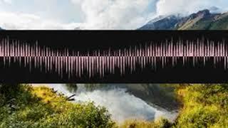Plainsongmusicality Epitonic rhnjsezndt