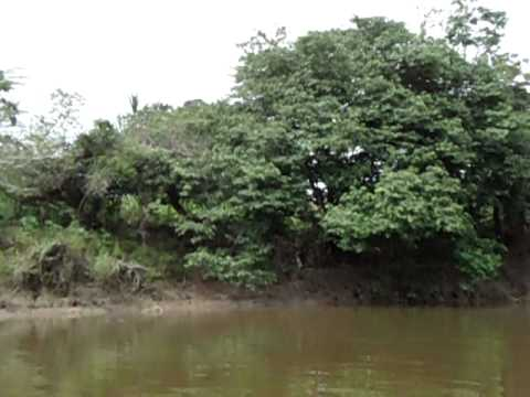 Rio Amazonas Mitos, Leyendas y Realidades