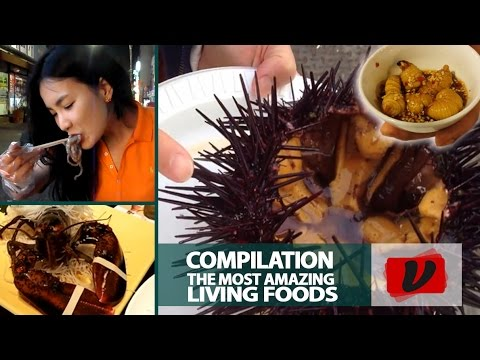 The Most Amazing Living Foods / Compilation