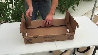 Folding 10 lb Tomato Boxes