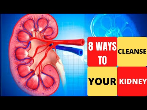 8-easy-ways-to-cleanse-your-kidneys