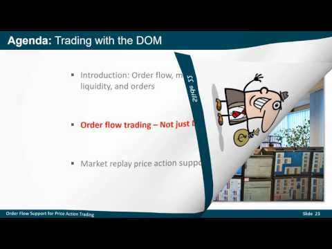 Order Flow Support for Price Action Trading