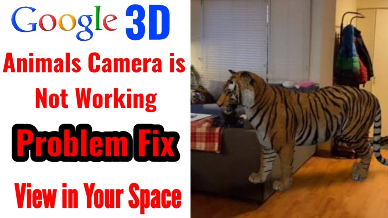 Google 3d Animals Camera Is Not Working Problem Fix View In Your Space Problem Solved 3d View Youtube