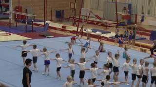 Открытый урок по спортивной гимнастике