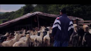 Romanian Peasants going to LVC VIIth Conference