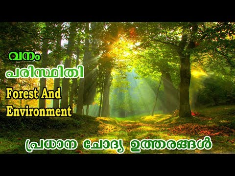 Forest And Environment | BIOLOGY | GENERAL SCIENCE |