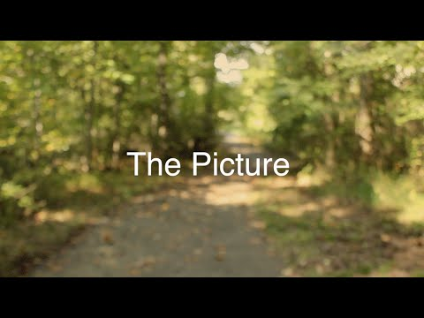 The Picture (An Original Short Film)