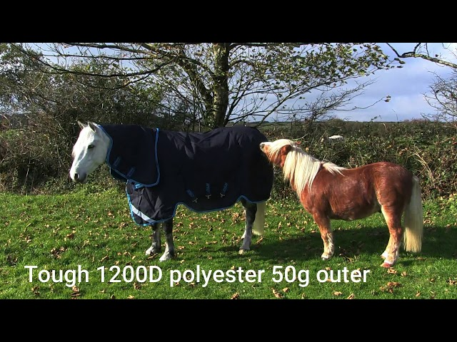 Mole Valley Farmers Promo of Amigo Rug Bundle