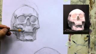 Обучение рисунку. Портрет. 20 серия: рисунок черепа в 2 ракурсах, 2 часть.