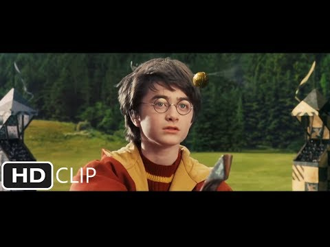Harry Potter and the Philosopher's Stone  First Quidditch Match Part 1 of 2