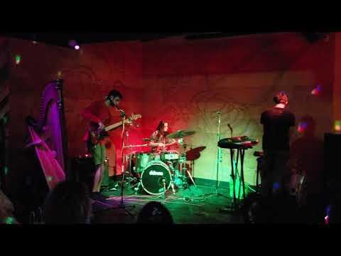 Garden Club @ Hooch & Hive 8/19/18