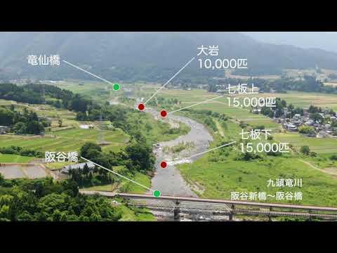 九頭竜川釣り場MAP
