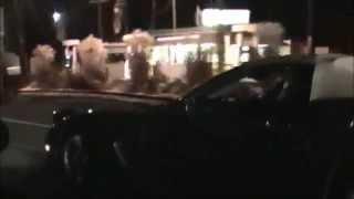 C5 Corvette vs Mustang GT
