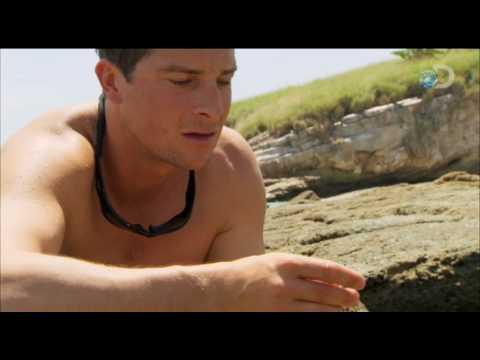 Man vs. Wild - Ecuador Fishing Piranha | Doovi