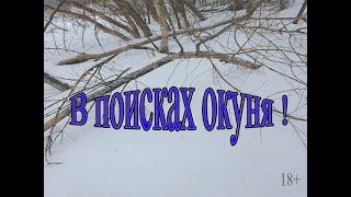 Рыбалка Рязанская область 2021 Ловля окуня зимой Пытаемся поймать окуня в глухозимье