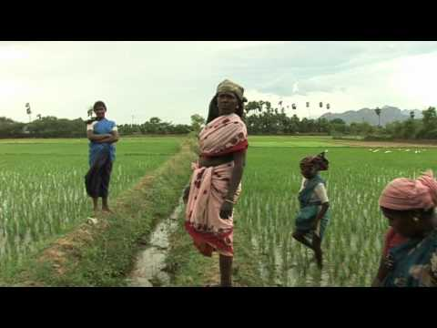 Rural Challenges: Case Studies from South India