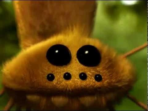 Мультфильм про паучка смотреть