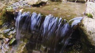 Wassertechnik am Teich - Teichpumpe auswählen