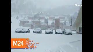 """""""Климат-контроль"""": какая погода ждет москвичей в праздник - Москва 24"""