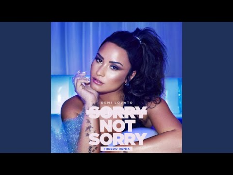 Sorry Not Sorry (Freedo Remix)